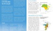 CULTIVARES DE SOJA (7)